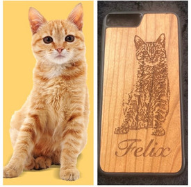 Cat Photo Engraving