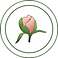 Candace Cleary Peony Logo Circle.png