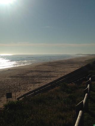 Summer At The North Shore Surf Company