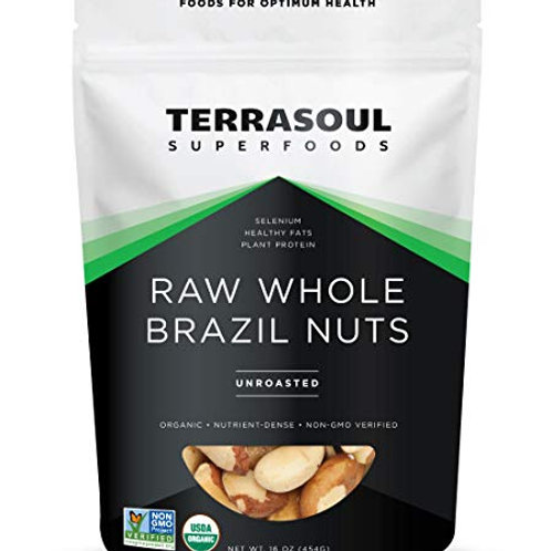 Raw Whole Brazil Nuts 16oz by Terrasoul