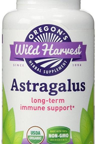 Astragalus by Wild Harvest 90 Cap