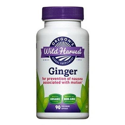Ginger 90 Cap by Wild Harvest