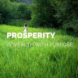 PROSPERITY-wealth-on-purpose-300x300.png