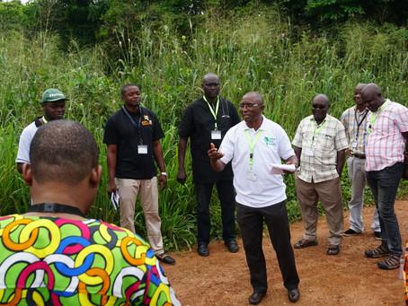 ACAI Tools For Cassava Agronomy Advice Are Ready For Nigerian Farmers