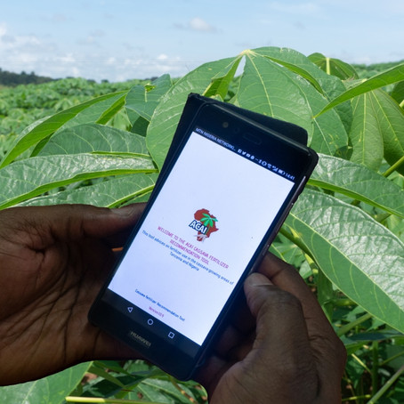 ACAI combines machine learning, field trial data and crop models to optimize fertilizer recommendati