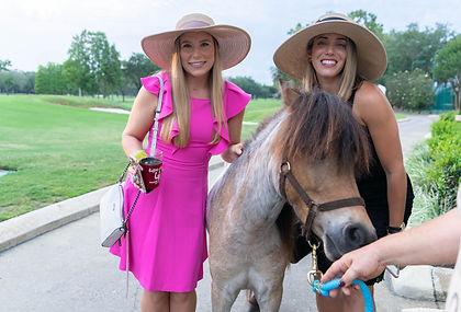 Mini Pony Pic - Save the date.jpg