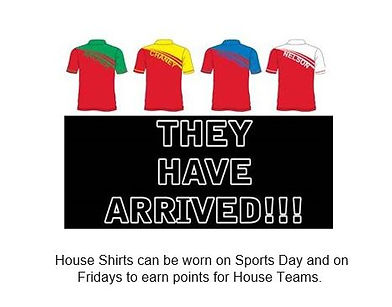 houseshirts.jpg