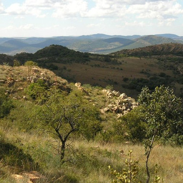Vredefort Dome site: Buffelshoek