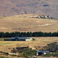 Farm setting in Clarens