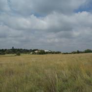 Site looking west