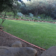 Garden from gate