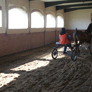 Stable practice track