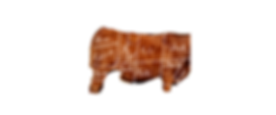 Beef Cuts 2.png