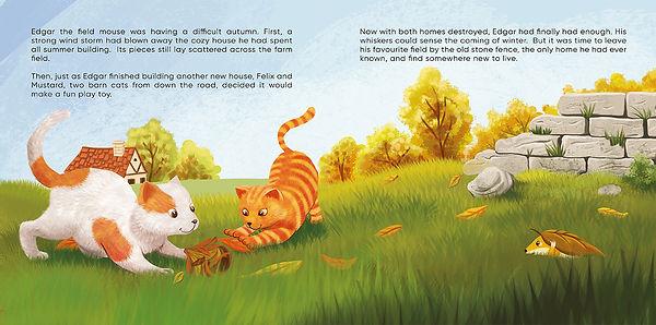 Anda Ansheen, Ansheen, illustator, ilustrator, illustrations, childrens book, picture book, illustrations fo children, Edgar the field mouse