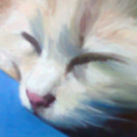 Anda Ansheen, Ansheen, illustator, ilustrator, illustrations, childrens book, picture book, illustrations for children, pet portaits, pet portrait, cat painting