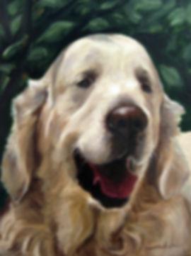 Anda Ansheen, Ansheen, illustator, ilustrator, illustrations, childrens book, picture book, illustrations for children, pet portaits, pet portrait, dog painting