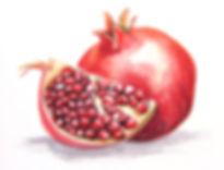 Anda Ansheen, Ansheen, illustator, ilustrator, illustrations, fod illustration, editorial illustration