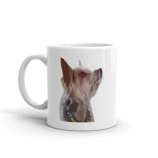 white-glossy-mug-11oz-5ff0a8e9ed849.jpg