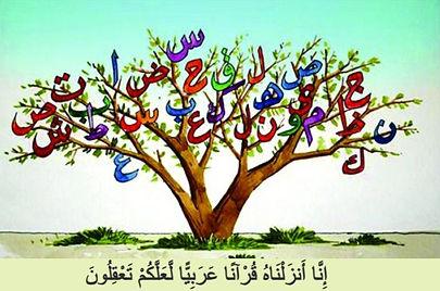 Ararar_edited.jpg