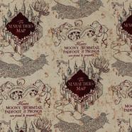 Mauraders Map