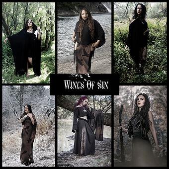 wingsofsin.jpg