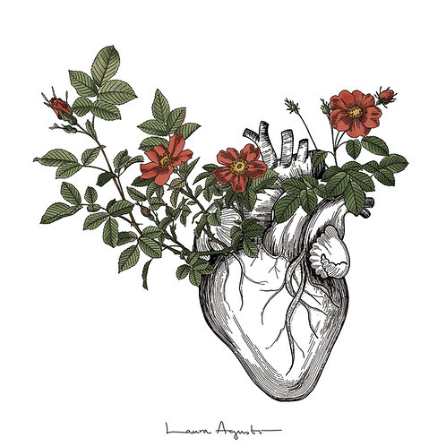 ANOTHER HEART IN BLOOM