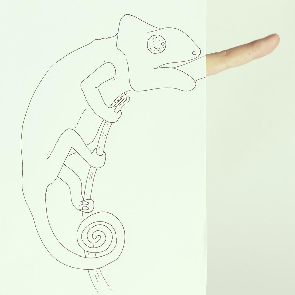animal7.jpg