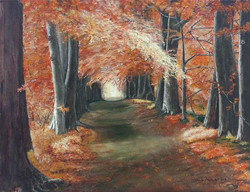 Wooded Path