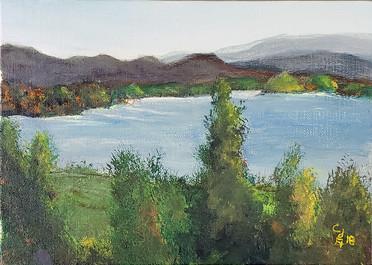 Plein Air on Douglas Lake