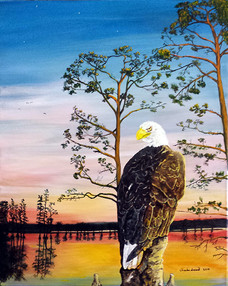 Reelfoot Eagle Sunset