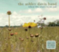 Ashley-Davis-Band-When-the-stars-went-ou