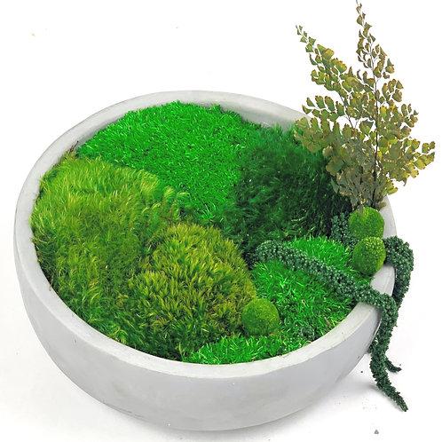 """8"""" Cement Moss Bowl"""