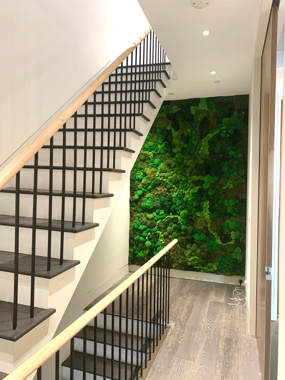 Custom Moss Wall