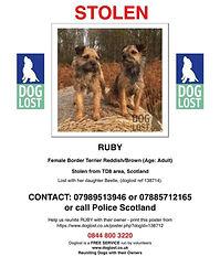 ruby dogl lost poster.jpg