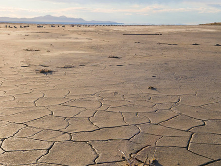 The Great Salt Lake Is Drying Up, and It's A Big Problem