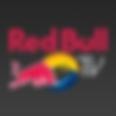 Red Bull Sandro G - Gson