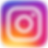 INSTA-logo-email.png