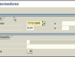 FI Visualizar Cuenta corriente proveedores SAP (FBL1N)