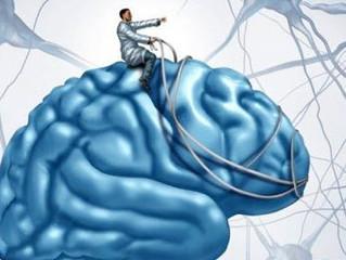Neuroplasticidad y Reiki