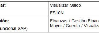 FI Visualización de Saldos de  Cuentas de Mayor (FS10N)