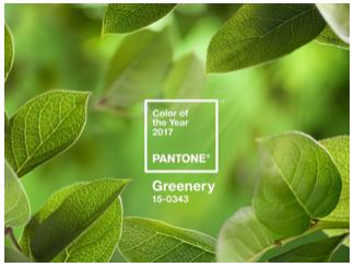 Greenery – A cor do ano eleita pela Pantone