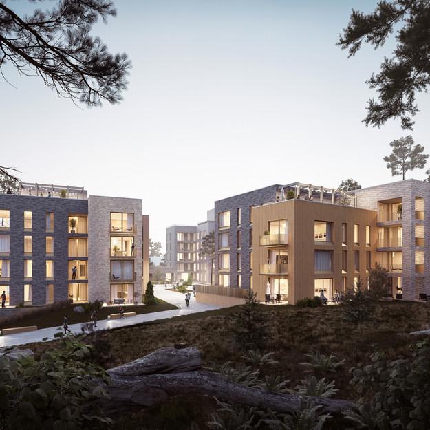 Housing Reform Helsinki