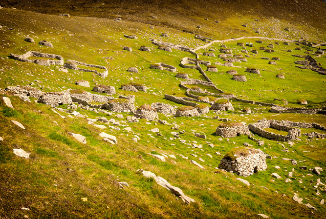 St Kilda 5