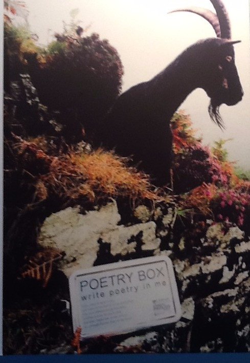 Number Seven in Dulverton, home of the Poetry Box