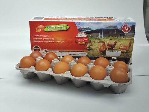Huevo de libre pastoreo