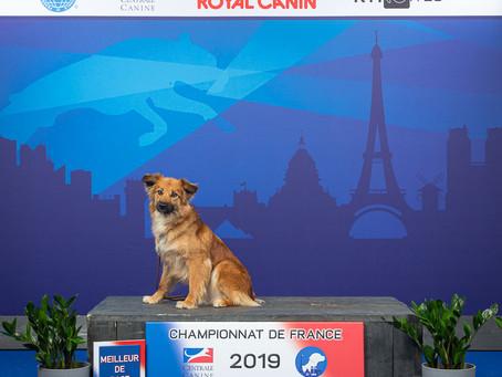 Photo de Nalla de la porte des touim's lors du Championnat de France à villepin te le 2 juin 2019