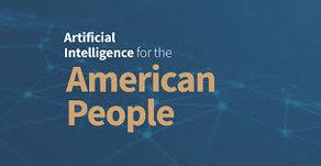 Lucd Perspective on Just Released White House 10 Principles for AI