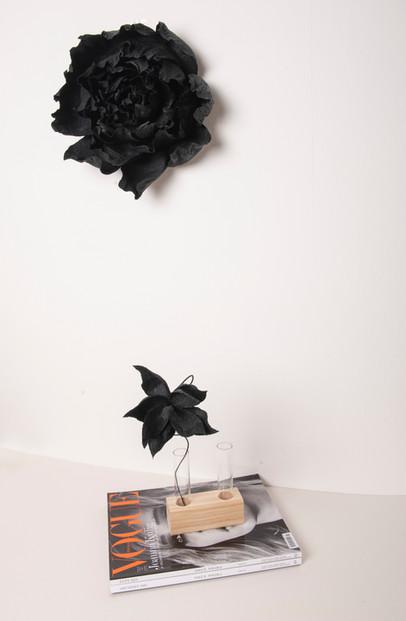 kwiat:czarny.jpg