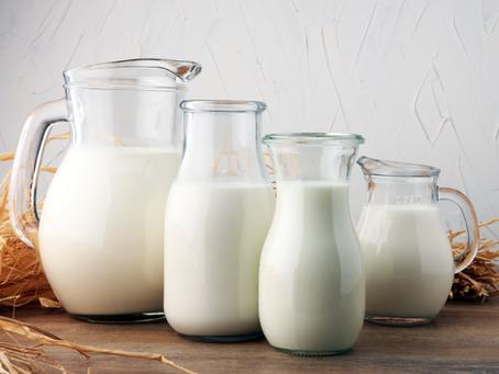 3 Benefits of A2 Milk Protein in Water Buffalo Milk
