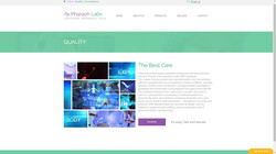 Landing page 4 labs 3